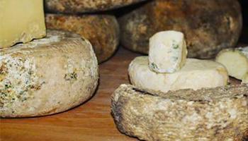fare-il-formaggio-in-casa